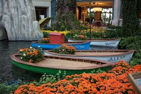 Photo courtesy of the Bellagio Conservatory and Botanical Gardens