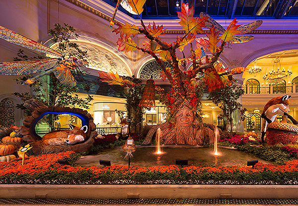 Bellagio Fall Display South Garden