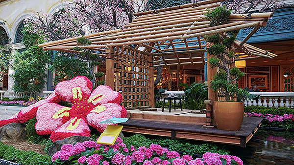 bellagio entertainment conservatory japanese spring tea house.jpg.image.1920.1080.high