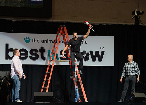 Host Jeff Civillico entertains guests with the help of audience members during the The Animal Foundations 11th Annual Best In Show Vegas 4.27.14