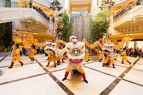 The Lion Dance Stops in the Waterfall Atrium and guests look on