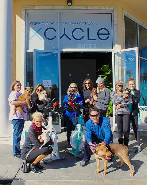 XCYCLE NSPCA Charity Ride PRESS